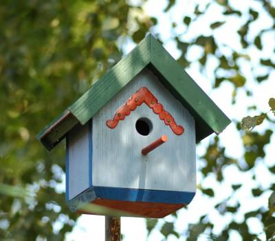 Smukke fuglekasser til haven