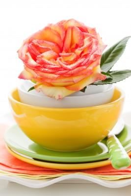 Spændende madlavning med spiselige blomster fra haven